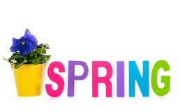 Primavera in testo Fotografia Stock Libera da Diritti