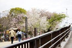 Primavera a Tokyo su un ponte fotografia stock libera da diritti