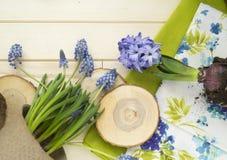 Primavera Trasplante de la flor Herramientas para el trasplante en un círculo Fondo de madera imágenes de archivo libres de regalías