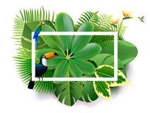 Primavera tropical de la isla de los vagos hermosos del verde y del adstract de las plantas libre illustration