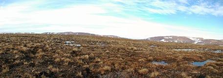 Primavera in tundra (panorama della Siberia del nord) fotografie stock libere da diritti