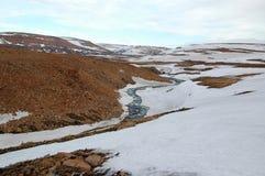 Primavera in tundra (Siberia del nord) Fotografie Stock Libere da Diritti