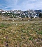 Primavera in valle della montagna Immagine Stock Libera da Diritti