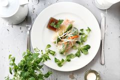 Primavera vegetal, fresca rollsy Un bocado vegetariano sano foto de archivo libre de regalías