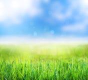 primavera verde abstrata com bokeh e fundo borrado Imagens de Stock