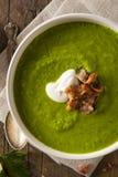 Primavera verde casalinga Pea Soup Immagini Stock