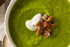 Primavera verde casalinga Pea Soup Fotografie Stock Libere da Diritti