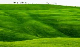 Primavera verde di Rolling Hills in Toscana Italia immagine stock