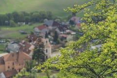 Primavera vicino al villaggio di Klentnice nell'area di Palava immagini stock