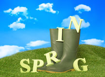 Primavera Wellies Immagini Stock