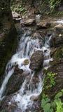 Primavera y piedra de la montaña Fotografía de archivo