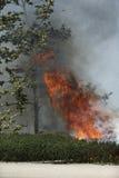Primaveras de Forrest Fire - de Camarillo 5-2-2013 Imagen de archivo libre de regalías
