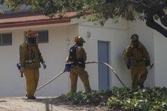 Primaveras de Forrest Fire - de Camarillo 5-2-2013 Imagenes de archivo
