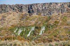 Primaveras que fluyen de un peñasco del basalto Imagenes de archivo