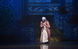 "The Prime Minister of humility- ballet ""One Thousand and One Nights"" Stock Image"