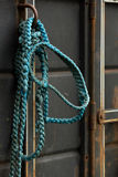 Primed For The Day!. Blue braided bridle is hanging on the side of a horse trailer royalty free stock photos