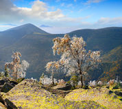 Primeira geada nas montanhas Fotos de Stock Royalty Free