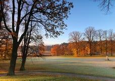 Primeira luz da manhã no parque em outubro foto de stock