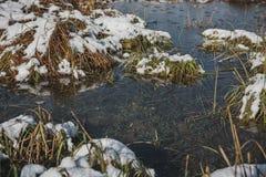 A primeira neve Fotos de Stock