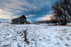 Primeira neve de coberturas do inverno um celeiro de madeira velho em uma exploração agrícola de Idaho imagem de stock