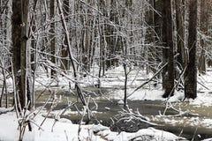 Primeira neve do inverno perto de Walkerton, Ontário imagem de stock