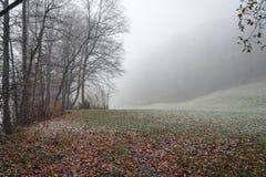 Primeira neve em Liectenstein imagens de stock royalty free