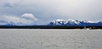 Primeira neve em Yellowstone imagens de stock