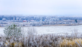 Primeira neve na vila Fotos de Stock