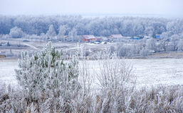 Primeira neve na vila Imagens de Stock