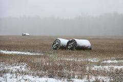 Primeira neve no campo imagens de stock royalty free