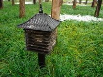 A primeira neve no palácio de verão Imagem de Stock