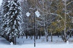 Primeira neve no parque fotos de stock