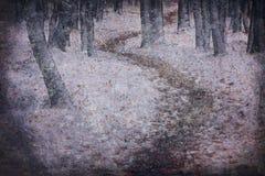 Primeira neve no parque fotografia de stock royalty free