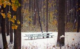 A primeira neve no parque do outono cobriu um banco Imagens de Stock