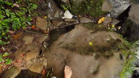 Primeira opinião da pessoa: Mulher no vestido branco que anda com os pés descalços na cachoeira selvagem na selva tropical Curso  filme