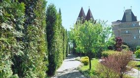 Primeira pessoa vista Caminhada ao longo das ?rvores ao longo de um trajeto em um parque bonito em um dia de ver?o ensolarado foto de stock royalty free