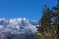 Primeira queda de neve do outono no parque natural de Aizkorri - Aratz, a municipalidade de Zegama Fotografia de Stock