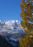 Primeira queda de neve do outono no parque natural de Aizkorri - Aratz, a municipalidade de Zegama Fotos de Stock