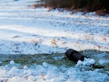 Primeira queda de neve em Fontecerro Rieti Itália Fotografia de Stock Royalty Free