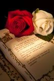Primeira união na Bíblia Fotos de Stock Royalty Free