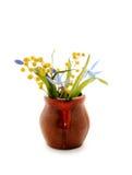 Primeiras flores da mola, snowdrops azuis e mimosa na vasilha de barro Foto de Stock Royalty Free