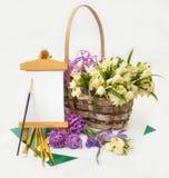 Primeiras flores da mola, snowdrops na cesta. Fotos de Stock