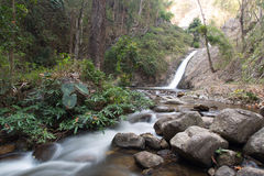 Primeiro plano da cachoeira e da rocha na floresta fotografia de stock royalty free