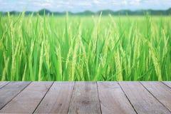 Primeiro plano de madeira velho da tabela com a orelha da almofada, do campo dourado do arroz, com céu e fundo das nuvens imagem de stock