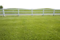 Primeiro plano prolongado da cerca gramínea Fotos de Stock Royalty Free