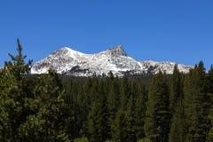Primeiro plano Unicorn Peak Blue Sky dos pinheiros Fotos de Stock