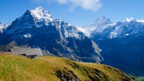 Primeiro Suíça das montanhas Fotografia de Stock
