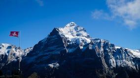 Primeiro Suíça das montanhas Imagens de Stock Royalty Free