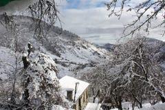 Primeiros dias do inverno Fotos de Stock Royalty Free