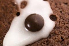 Primeiros queques do chocolate Fotos de Stock